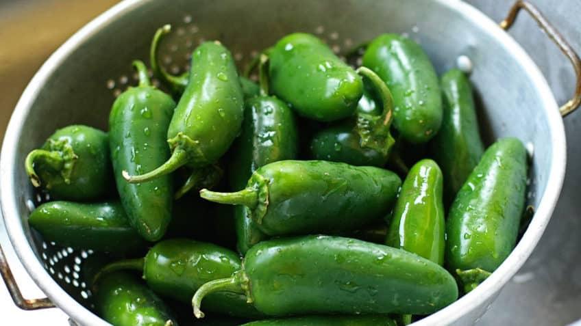 Receta de enchiladas verdes chiles jalapeños verdes